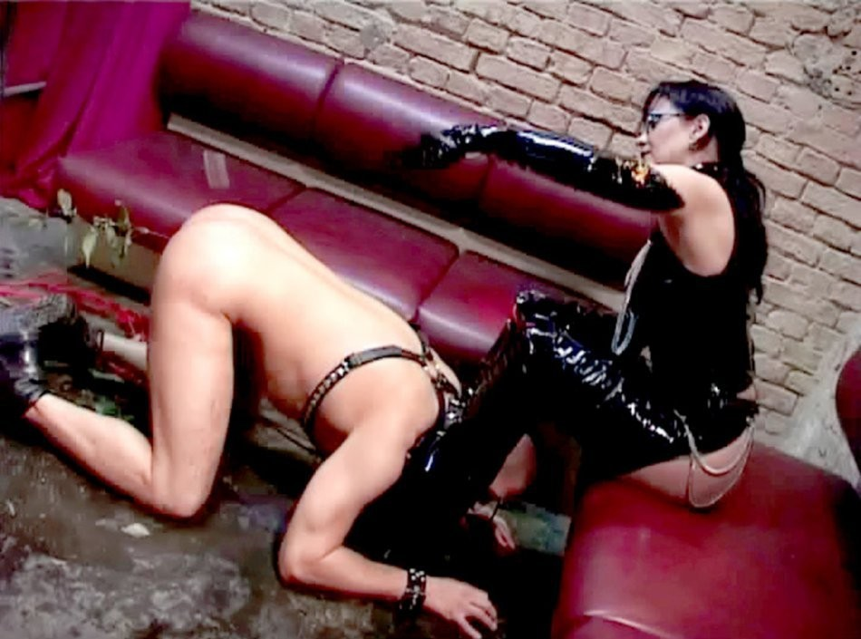 paid to give blowjob funny fast – Erotic